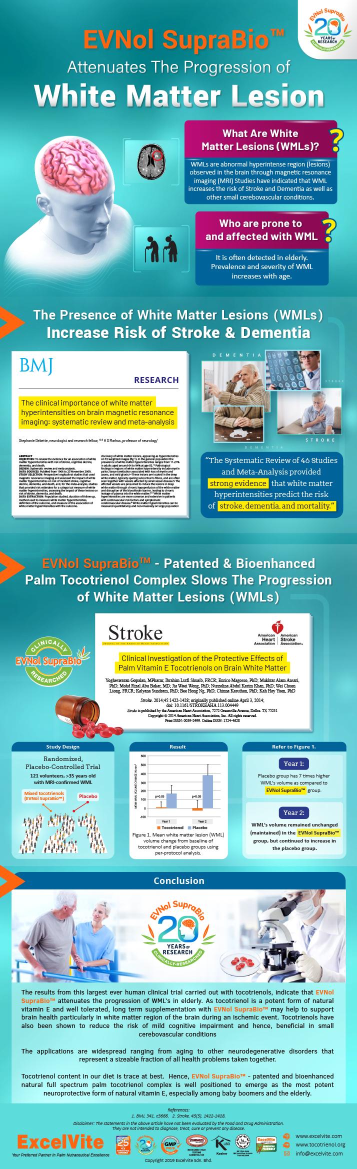 EVNol SupraBio Attenuates White Matter Lesions